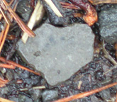 Heart-Shaped Stone