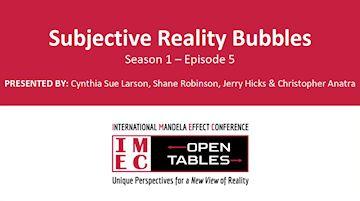 IMEC Open Tables: Subjective Reality Bubbles