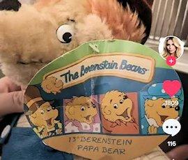 Berenstein Berenstain bear