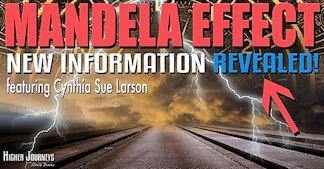 Mandela Effect and Retrocausality